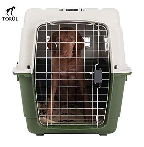 Savic Feria Transportín Mascotas Perros Gatos Conejos (IATA) Verde ...