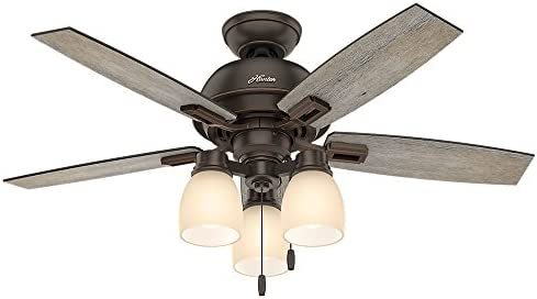 Hunter Donegan Indoor Ceiling Fan
