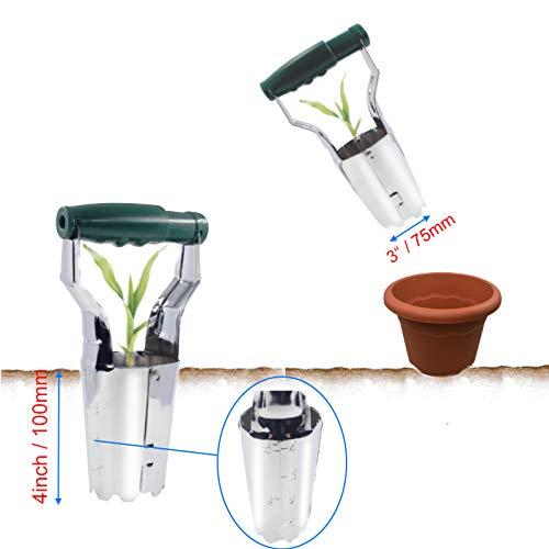 Bulb Planter Tulip Transplanter Depth Marks Bundle Includes: Garden Claw Gloves Padded Kneeler by Cardinal Home (Image #1)
