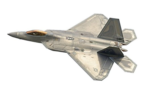 Rogue River Tactical Large Military Fighter Jet F-22 Raptor Aircraft Wall Decal Sticker Boys Bedroom Airplane Wall Decor Decoration Peel and Stick