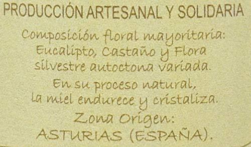 Jalea de Luz Miel Cruda Pura de Eucalipto - 950 gr.