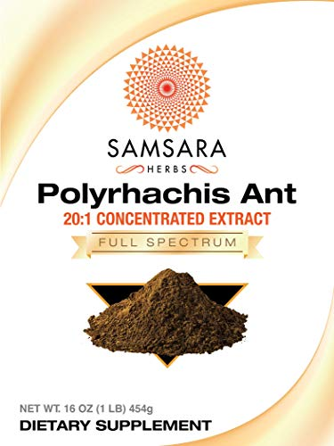 Samsara Herbs Polyrhachis Ant Extract Powder – 20 1 Concentrated Extract 16oz