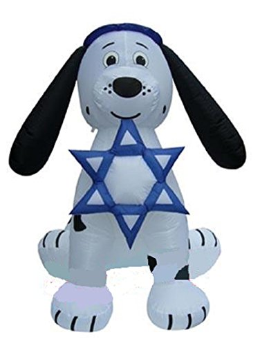 Outdoor Lighted Star Of David - 6