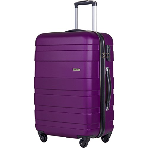 Merax Afuture 20 24 28 inch Luggage Lightweight Spinner Suitcase (28-Consignment, Purple)