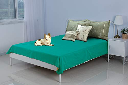 (Silly Legacy Reversible Waterproof Protective Cover or Liner for Bed or Couch, for Dogs and Cats (Queen 82 x 78, Teal/Walnut))