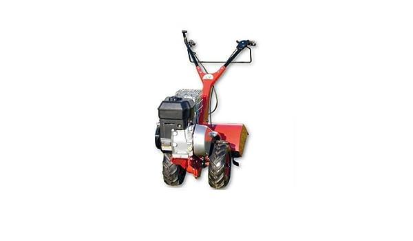 Motocultor de gasolina eurosystems EUR RTT 2 B (sin ruedas ...