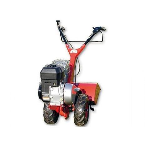 Motocultor de gasolina eurosystems EUR RTT 2 B (sin ruedas - sin ...