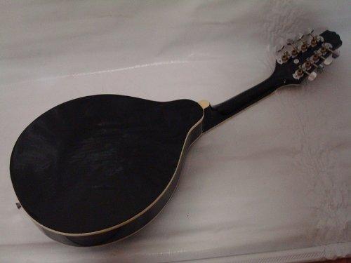 Ktone A-style Acoustic Electric Mandolin, Free Gig Bag, Black, Brand New