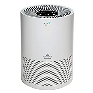 Gut Health Shop 41BLLgCtO6L._SS300_ BISSELL Air Purifier, MYair, 2780A