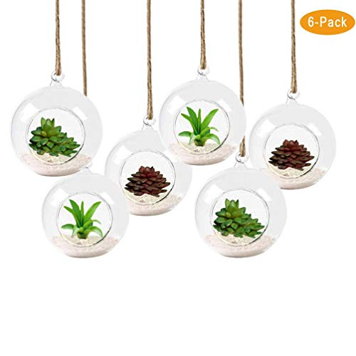 Pack of 6 Hanging Round Glass Terrarium with String - Heat Resistant,Handmade,High Borosilicate-8 cm Diameter-Air Plant hanging glass terrarium- Refresh Your Air