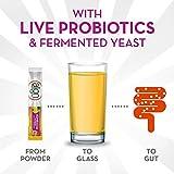 Align Kombucha Probiotic Supplement, Immune Support