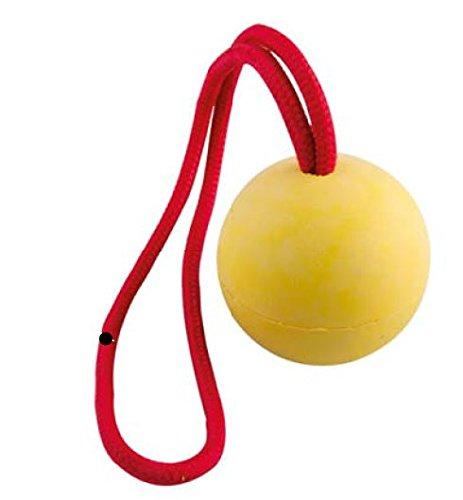 Perros juguete pelota con cuerda 50 mm: Amazon.es: Productos para ...