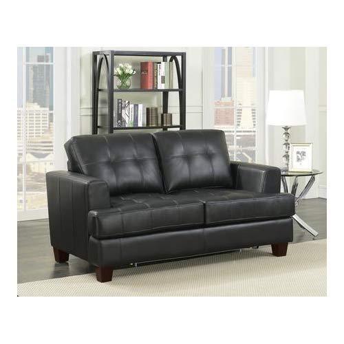 (Coaster Home Furnishings 501689 Living Room Sofa Love Seat Sleeper, Black/Dark Brown)