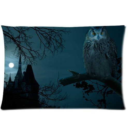 1AlexStore Pillowcase Standard 16x24 Inch one Sides Zippered
