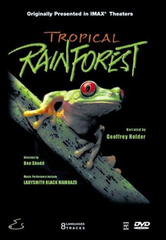 Tropical Rainforest (Large Format)
