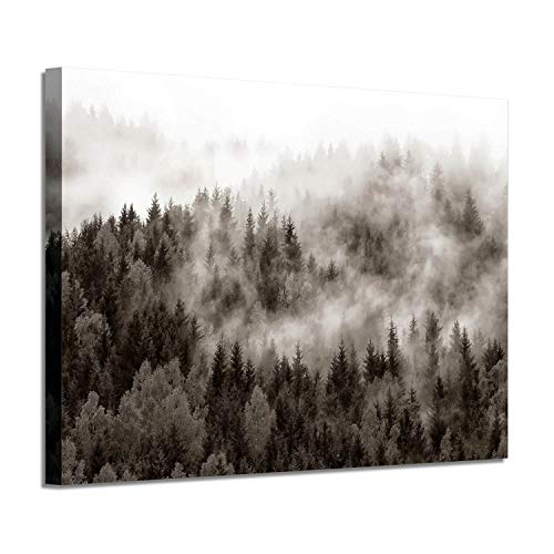 (Foggy Forest Canvas Wall Art: Landscape Misty Woodland Giclee Print Painting for Living Rooms Office(36