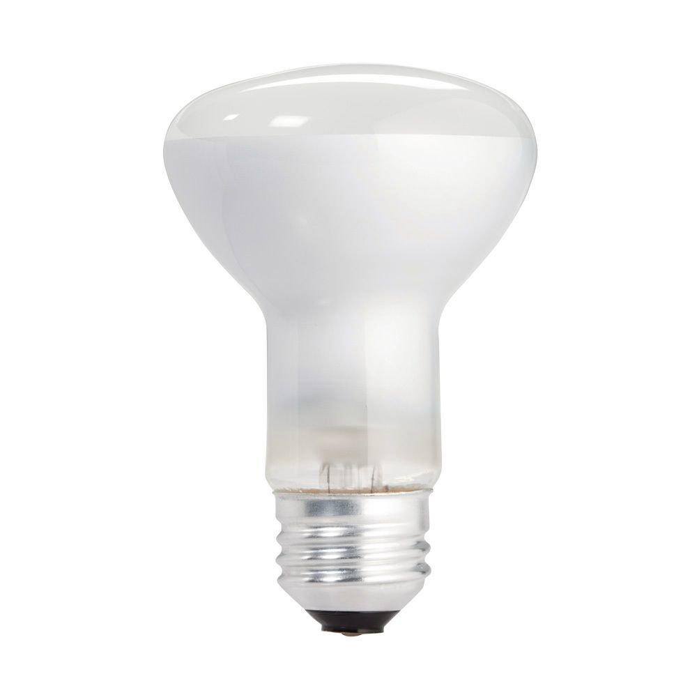 Philips 223115 Soft White 45-Watt R20 Indoor Flood Light Bulb, 12 ...