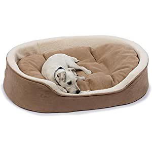 Petco oval tan and cream lounger dog bed for Does petco sell fish