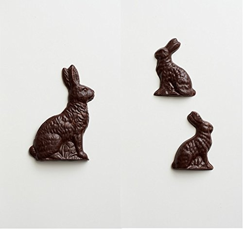 easter bunny chocolate molds