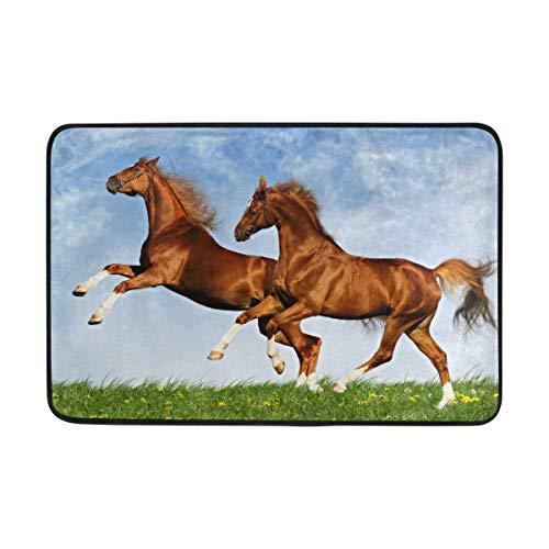 Shengqinfeng Two Horses Frolic On The Plain Doormat Area Rug Rugs Non-Slip Indoor Outdoor Floor Mat Doormats for Home Decor 23.6 x 15.7 ()