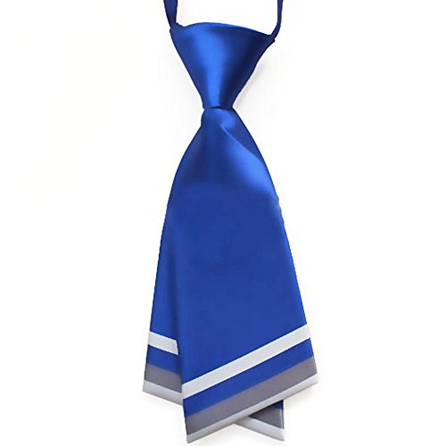 Hanerdun® Womens Bowtie Ladies Pre-Tied Silk Necktie Costume Accessory Gift Idea