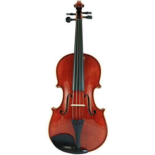 D'Luca CA400VA-16 16-Inch Orchestral Series Handmade Viola Outfit ()