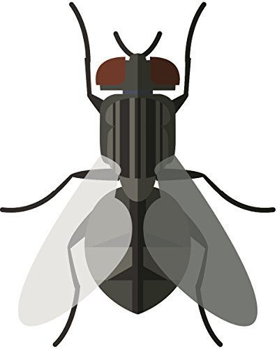 Simple Classic Insect Bug Cartoon Emoji Vinyl Sticker (All Sizes, Fly)