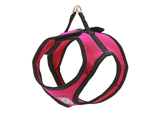 RC Pet Products Step in Cirque Soft Walking Dog Harness, Medium, Raspberry