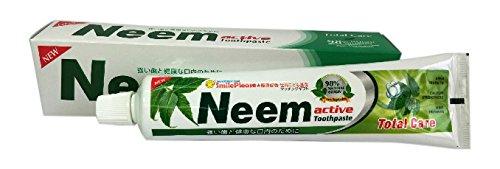 偽物コンベンション気体のニームアクティブ歯磨き粉 200g