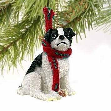 Amazon.com: Conversación Conceptos Jack Russell Terrier ...