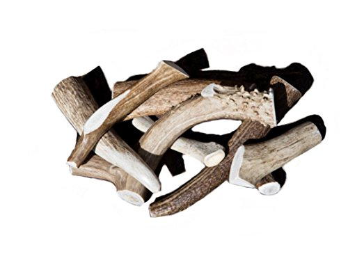 Deer And Elk Antlers For Dogs, Premium A Grade Antler Dog Chews, All Natural And Organic (Reindeer Antlers For Sale)