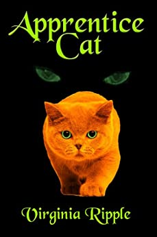 Image result for apprentice cat book