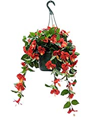 Silk Plant Decor and More UV Protected Hanging Flowering Arrangements (Hibiscus Red)