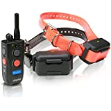 Dogtra 1902NCP FieldStar Remote Training Collar 2-Dog System