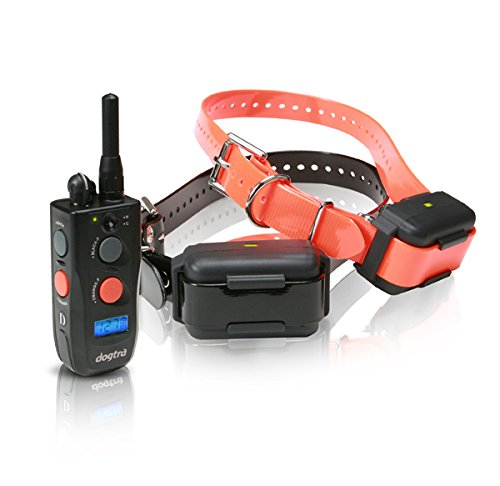 Dogtra Ncp Dog Training Collar