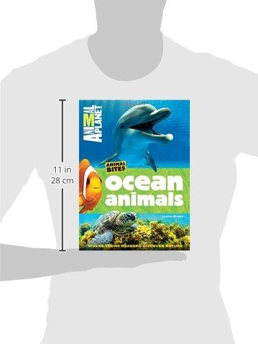 Ocean Animals (Animal Planet Animal Bites) by Animal Planet (Image #6)