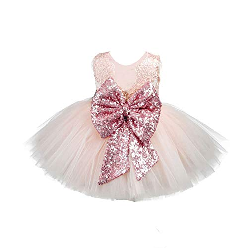 EsTong Newborn Baby Girls Sequins Bowknot Floral Princess Dresses Tulle Tutu Outfit Clothes Pink 0-1Y