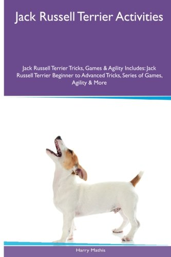 Jack Russell Terrier Activities Jack Russell Terrier, used for sale  Delivered anywhere in USA