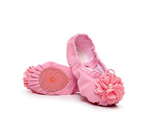 Pink Baile Zapato Color 37 Muchos Xuanbao Ballet Colores Zapato Polet EU Rosado 3 Shoes de Profesional tamaño de 1 gwYxqdxEp