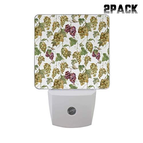 - Designer 2PCs Plug in LED Night Light Auto Sensor Dusk to Dawn Decorative Night for Bedroom, Bathroom, Kitchen, Stairs,Babys Room,Raisins Watercolor