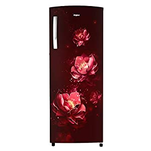 Whirlpool 280 L 3 Star Direct-Cool Single Door Refrigerator (305 IMPRO PLUS PRM 3S WINE ABYSS, Alpha Steel)