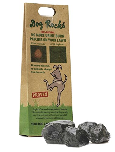 Dog Rocks All Natural Grass Burn Solution for Dogs Prevents Lawn Urine Stains (200 Milligram Bag) by Dog Rocks