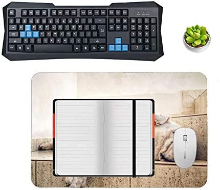 Gaming Mouse Pad Lazy Dog Desktop and Laptop 1 Pack 1200x600x3mm//47.2x23.6x1.1 in