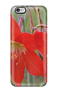 Red Flowers Awesome High Quality Iphone 6 Plus Case Skin 9721944K42085363