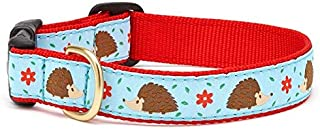 product image for Up Country Hedgehog Dog Collar
