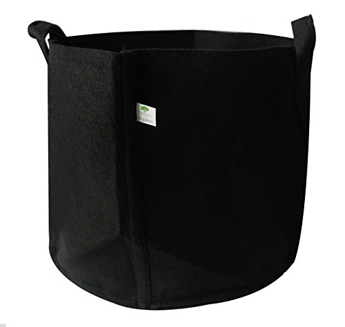 Grow Bags 10 Gallons: Aeration Fabric Pots With Handles For Plant Growth Boost And Better Root Structure, Healthy Crops All Year Long, Eco-Friendly Materials, For Farmers And Gardeners (10 Gallons)