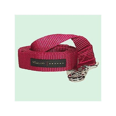 Nylon Dog Lead Size: Small, Color: Olive