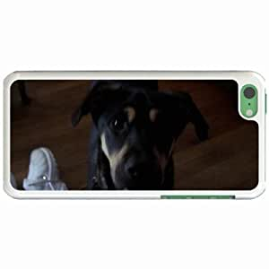 Lmf DIY phone caseCustom Fashion Design Apple ipod touch 5 Back Cover Case Personalized Customized Diy Gifts In dog piano steinway WhiteLmf DIY phone case