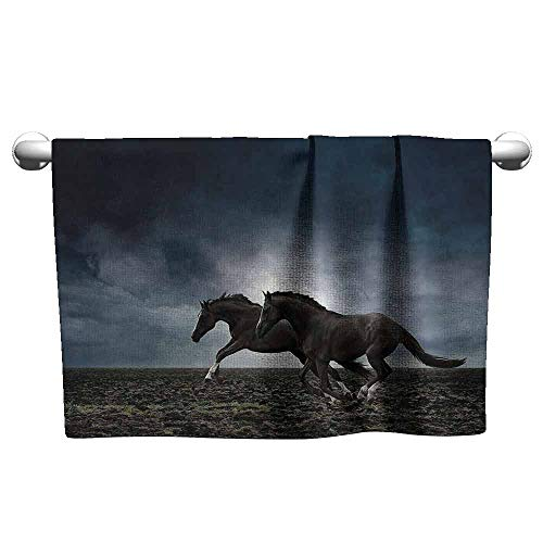 (Mannwarehouse Horses Animal Water-Absorbing Bath Towel Couple Horses Running on The Plowed Field in Stormy Dark Weather Sky Equestrian Concept W27 x L55 Fabric)