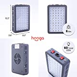 Red Light Therapy Device by Hooga, Red and Near